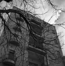 HirshbeinFilm-0980_031.jpg