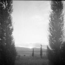 Nevo_1815.jpg