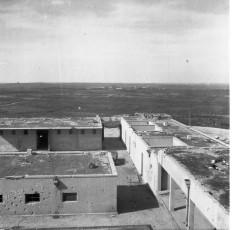 Nevo_1856.jpg