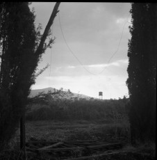 Nevo_1859.jpg