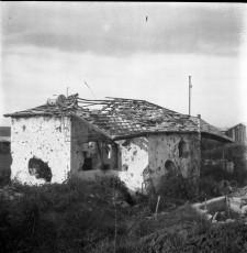 Nevo_1861.jpg