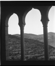 Nevo_1867.jpg