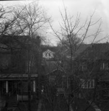 Nevo_1897.jpg