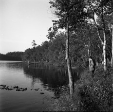 Nevo_1910.jpg