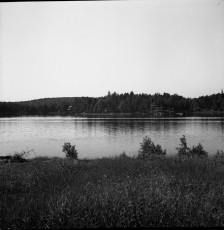 Nevo_1913.jpg