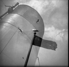 Nevo_1930.jpg