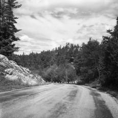 Nevo_1931.jpg