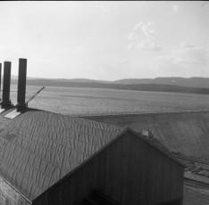 Nevo_1947.jpg