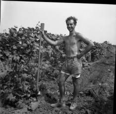 Nevo_1959.jpg