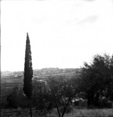 7080-3.3.jpg
